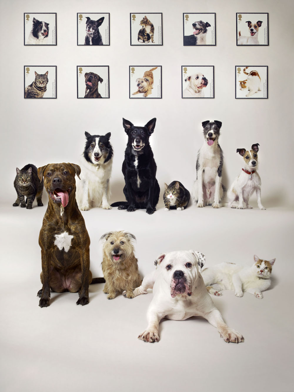 The Royal Mail celebrated the 150th anniversary of the world famous Battersea Dogs and Cats Home with a commemorative set of ten 1st Class stamps. Pictured in this montage of the starring animals are: Top Row [L-R] Tigger, a tomcat; Tafka, a collie; Herbie, a mongrel; Mr Tumnus, a tomcat; Casey, a lurcher; Leonard, a terrier; Bottom row [L-R] Pixie, a mastiff; Tia, a terrier; Boris, a bulldog and Button, a tomcat